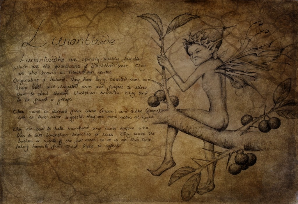 Drawing of a Lunantisidhe blackthorn faery