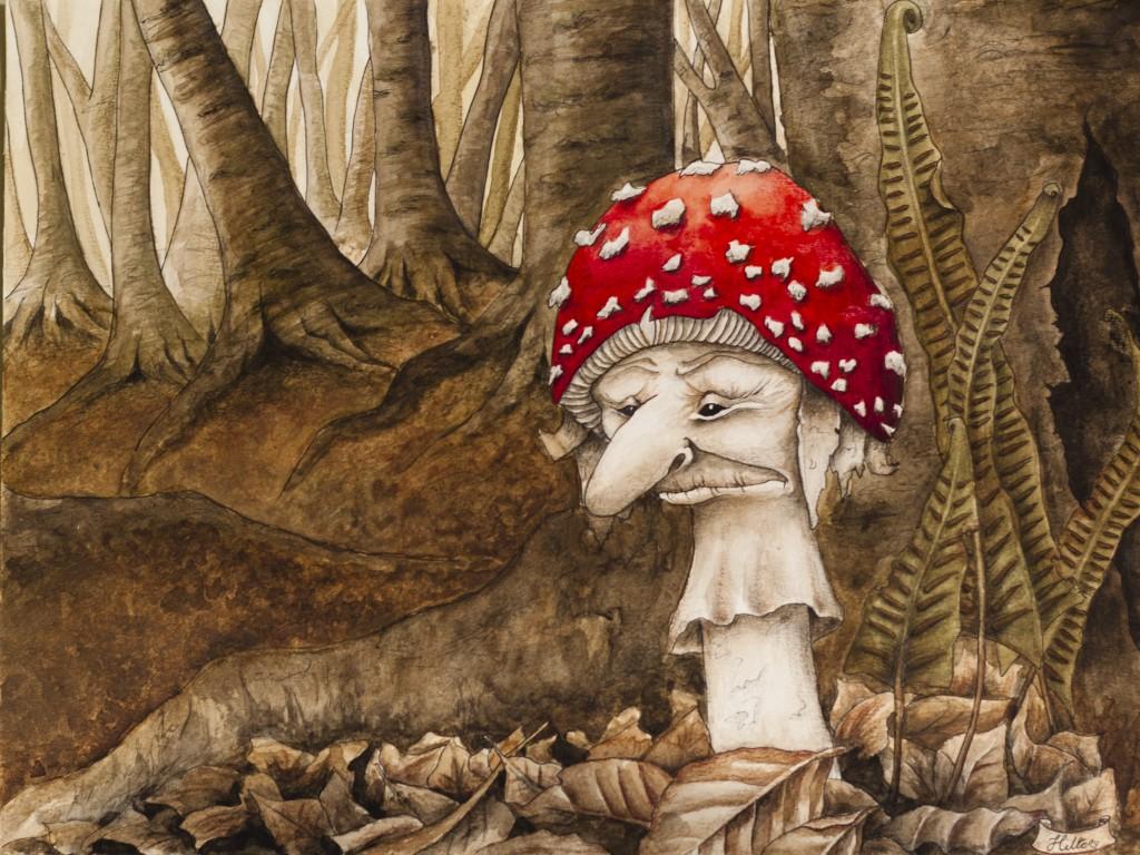 Flay agaric mushroom in woodland