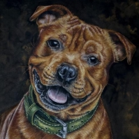 Staffordshire bull terrier painting by Jessica Hilton