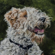 Wire fox terrier painting by Jessica Hilton