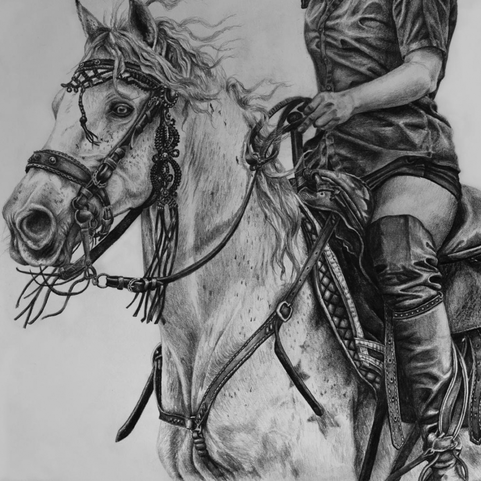 Stunt horse drawing by Jessica Hilton