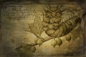 Gooseberry Wife Isle of Wight Faery by Jessica Hilton