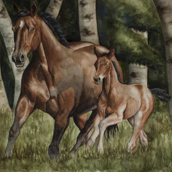 Mare and Foal painting by Jessica Hilton
