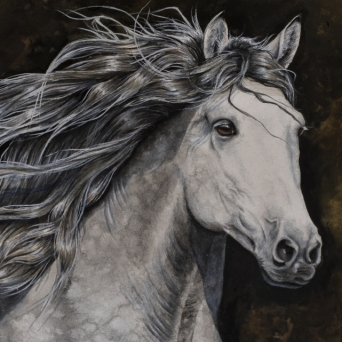 Grey horse painting by Jessica Hilton