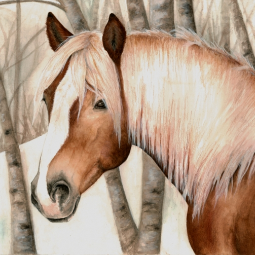 Haflinger horse in the snow painting by Jessica Hilton
