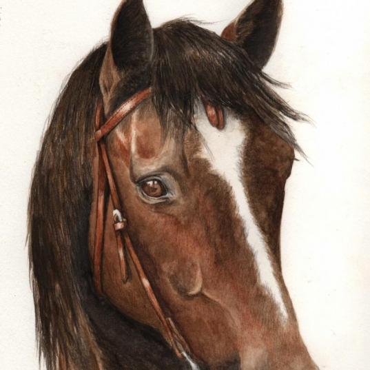 Quarter Horse painting by Jessica Hilton